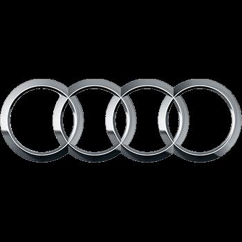 Audi männät